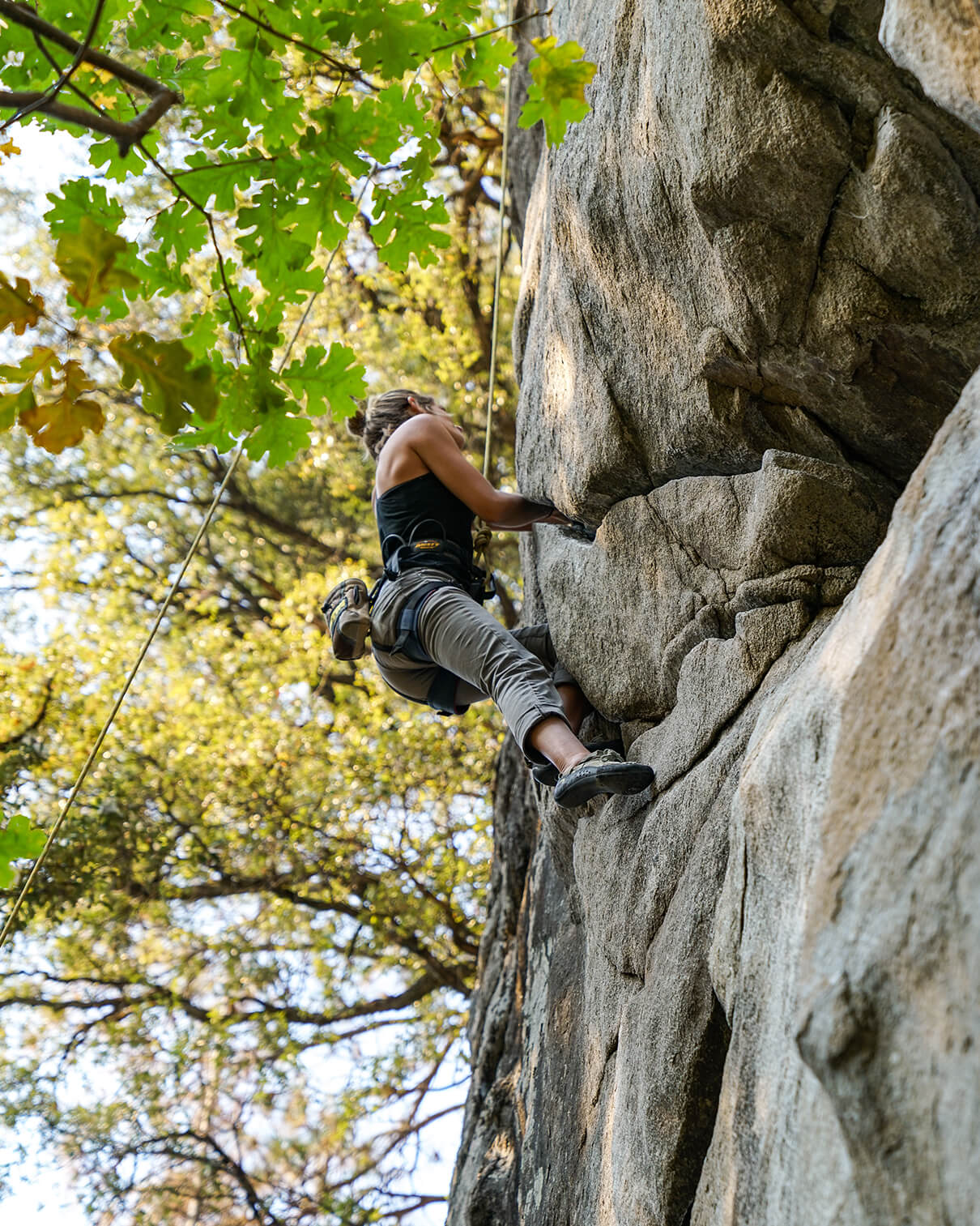 Women outside rock climbing under tree. If you're looking to enhance your peak performance southlake, then you've come to the right place. EMDR for peak performance in Southlake, TX can help you achieve your work, school, and performance goals. Begin EMDR therapy in Texas with us!